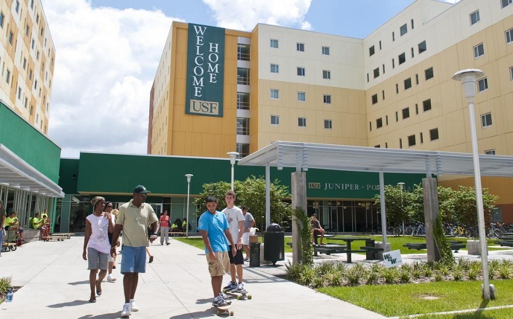 University of South Florida (USF)
