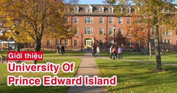 University of Prince Edward Island - ĐẾN PEI HỌC GÌ CHO ĐỊNH HƯỚNG TƯƠNG LAI